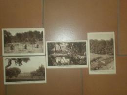 CAB582  Lot De 4  CPA  Neuves  : Dep. 83 Var / Tourves - 5 - 99 Postcards