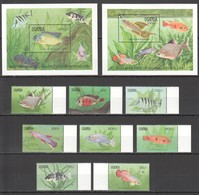 G424 1991 UGANDA FISH & MARINE LIFE UGANDA SERIES 1990 #873-80 !!! MICHEL 14 EURO !!! 1SET+2BL MNH - Vie Marine