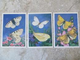 Lot De 3 Cpsm 1986 Papillon Fiche Technique Au Recto En Langue Russe  Colias Thisoa Leptidea Morsei Parnasissius Clarius - Papillons