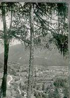 TIONE - PANORAMA- FG- VIAGGIATA 1950 - Trento