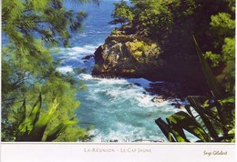 Ile De La Reunion. Ed Serge Gelabert 2014 . 214 Cap Jaune Cote Sauvage - Non Classés