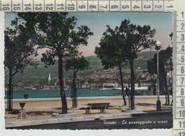 TRIESTE  LA PASSEGGIATA  A MARE  VG  1956 - Trieste