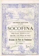 Titre Ancien - SOCOFINA -Société Financière Et Agricole Du Ruanda - Titre De 1928 - N° 00501- VF ** - Déco - Afrique