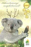 KOALA * KOALA BEAR * ELEPHANT * ANIMAL * ZOO & BOTANICAL GARDEN * CHRISTMAS * XMAS * Budapest Zoo 13 04 * Hungary - Otros