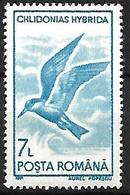 Romania - MNH 1991 :    Whiskered Tern  -  Chlidonias Hybrida - Seagulls