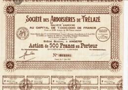 49-ARDOISIERES DE TRELAZE. STE DES ...  ANGERS. Cadre Déco - Acciones & Títulos