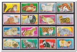 Equtoriaal Guinea 1975, Postfris MNH, Cats - Equatorial Guinea