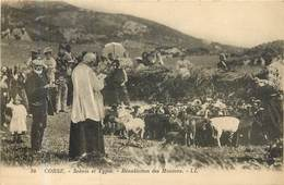 CORSE Bénédiction Des Moutons - France