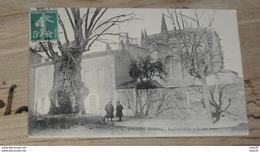 VIVIERS : La Cathédrale Et Le Vieil Orme …... … PHI.......2530 - Viviers