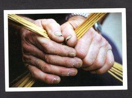 Les Mains Du VANNIER - Boissy-le-Châtel 1994 - Photo F. Thion - Craft