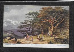 AK 0478  Perlberg , F. - Cadern Des Libanon ( Palästina ) / Künstlerkarte Um 1910-20 - Perlberg, F.