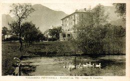 LECCO - VALSASSINA - MAGGIO - PANORAMA ALPESTRE - N 3/424 - Autres Villes