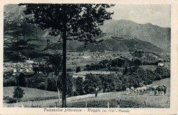 LECCO - VALSASSINA - MAGGIO - PANORAMA ALPESTRE - UN PASCOLO - N 3/425 - Autres Villes