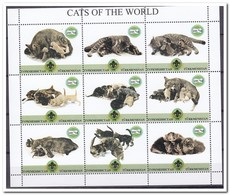 Turkmenistan, Postfris MNH, Cats, Scouting - Turkménistan