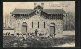 CPA La Chapelle-sur-Erdre, Le Chenil Et La Meute De La Poterie - Sin Clasificación