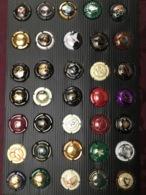 LOT DE CAPSULES DE CHAMPAGNE /28/ - Colecciones