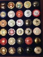 LOT DE CAPSULES DE CHAMPAGNE /31/ - Colecciones