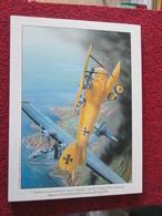 CAGI4 Superbe Gravure Francis BERGESE Sur Carton Fort 180gr , Format Env. A4 , AVIATION : ALBATROS DIII ET PBY CATALINA - Aviation