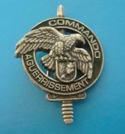 RARE Insigne Militaire  CENTRE D ENTRAINEMENT COMMANDO CEC GIVET   RARE ET LUXE - Army