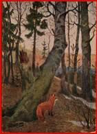 Renard 1954 Renard Paysage Animaux Faune - Ohne Zuordnung