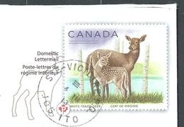 DZ-/-034-- CANADA - REGIME INTERIEUR - CERF De VIRGINIE  En ENTIER POSTAL REELLEMENT CIRCULE - DATE = 04/03/2013, TTB - Oblitérés