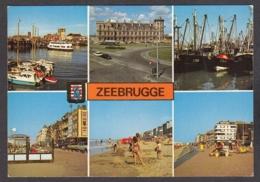 104733/ ZEEBRUGGE - Zeebrugge