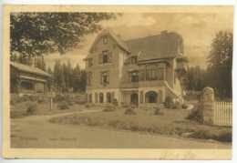 Schierke Haus Waldesruh Wernigerode Feldpost 1916 Harz - Wernigerode
