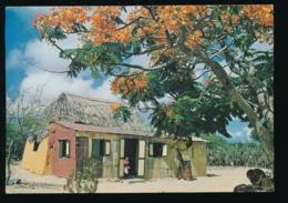 Bonaire - Nikiboko Village [Z02-3.423 - Bonaire