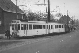 PHOTO TRAM N NINOVE REPRO - Tramways