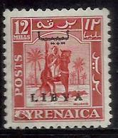 LIBIA LIBYA 1951 REGNO INDIPENDENTE EMISSIONE PER LA CIRENAICA CYRENAICA 12m MLH - Libia