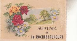 SOUVENIR  DE LAROCHEBEAUCOURT - France