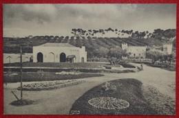 Postcard Of The   Lisboa   /  Jardim Zoologico De Lisboa - Cerrado Dos Elefantes  ( Lote Nº 1402 ) - Lisboa