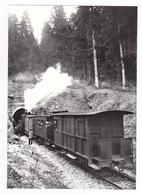 CPM TRAIN VOIR DOS 01 Tunnel De Corcelles KM20 Ligne Nantua Hauteville Train Locomotive Vapeur Collection J. Monternier - Nantua