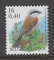 TIMBRE NEUF DE BELGIQUE - OISEAU DE BUZIN : PIE GRIECHE ECORCHEUR N° Y&T 2885 - Sperlingsvögel & Singvögel