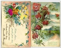 Lot De 2 Cpa  Gauffrée - Fleurs & Colombes - Autres