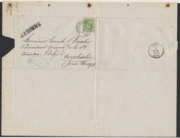 """N°30 Sur LAC Obl DC Ambulant """"Ambt - Arlon - Bruxelles"""" (1873, Manusc. Wierde) + Griffe NANNINE > Corphalie (Huy) - 1869-1883 Leopoldo II"""