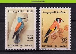 Mza081 FAUNA VOGELS PUTTER FINCH BIRDS VÖGEL AVES OISEAUX MAROKKO MAROC 1995 PF/MNH - Collections, Lots & Series