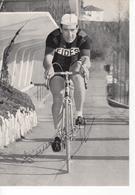 PIERINO BAFFI  SIGNEE  FIDES - Ciclismo