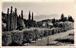 74 MORNEX VILLA EMMANUEL ET L'AVENUE CPSM - Francia