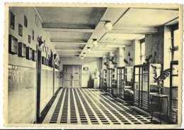 PRO JUVENTUTE - Institut De Ste Ode - AMBERLOUP - Le Musée Scolaire - Sainte-Ode