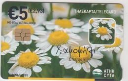 CYPRUS - Herbs, Chamomile, GEM5 (Red) , Tirage 50.000, 06/08, 5€, Used - Chypre