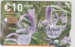 CYPRUS - Herbs, Rosemary, GEM5 (Red) , Tirage 50.000, 06/08, 10€, Used - Chypre