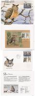 Aland Åland 1996 World Wildlife: Eagle Owl. Mi 109-112 X2  In Booklet MH 4 MNH - FDC   Maximum Card In Folder - Aland