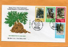 Northern Cyprus Turkish Republic Of Northern Cyprus 1993 FDC - Zypern (Türkei)