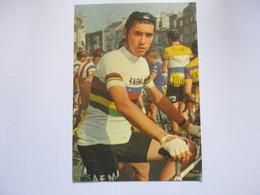 Cyclisme Cp Eddy Merckx  Editee Par Pok - Cyclisme