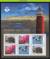 Nff240b FAUNA FLORA VOGELS EGEL VUURTOREN TEXEL LIGHTHOUSE ORCHIDEE FLOWER HEDGEHOG BIRDS GUINÉ-BISSAU 2012 PF/MNH # - Lighthouses
