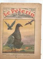 Revue  Le Pélerin-1934--les Pigeons..etc - Livres, BD, Revues