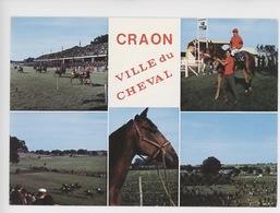 Les Courses à Craon (73) Ville Du Cheval (multivues) - Reitsport