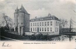 Diegem - Château De Dieghem - Diegem