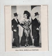Alice Meva Rimels And Partner - Vieux Papiers